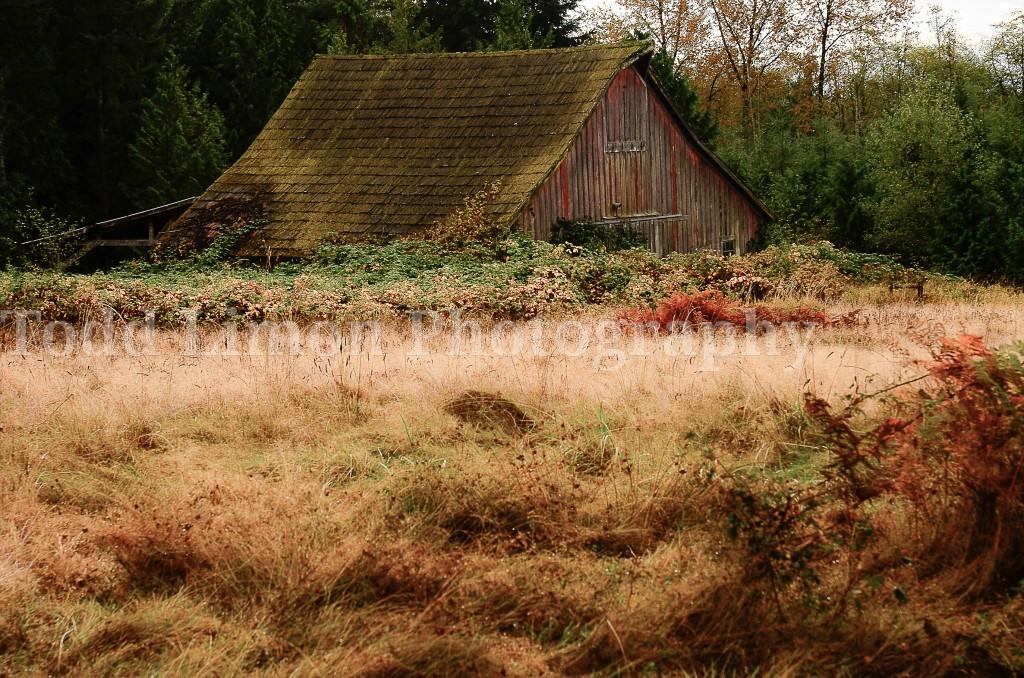 Hobbit Barn